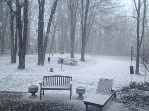 March 20, 2013 The First Day of Spring in Ohio