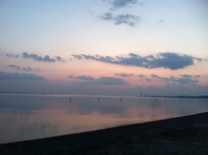 Sunrise on Lake Erie - my friend took this just before an open water swim practice.